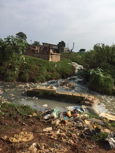 Rivers of sewage flow in Humansdorp